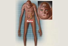 Beginilah Bentuk Manusia 1000 Tahun Mendatang
