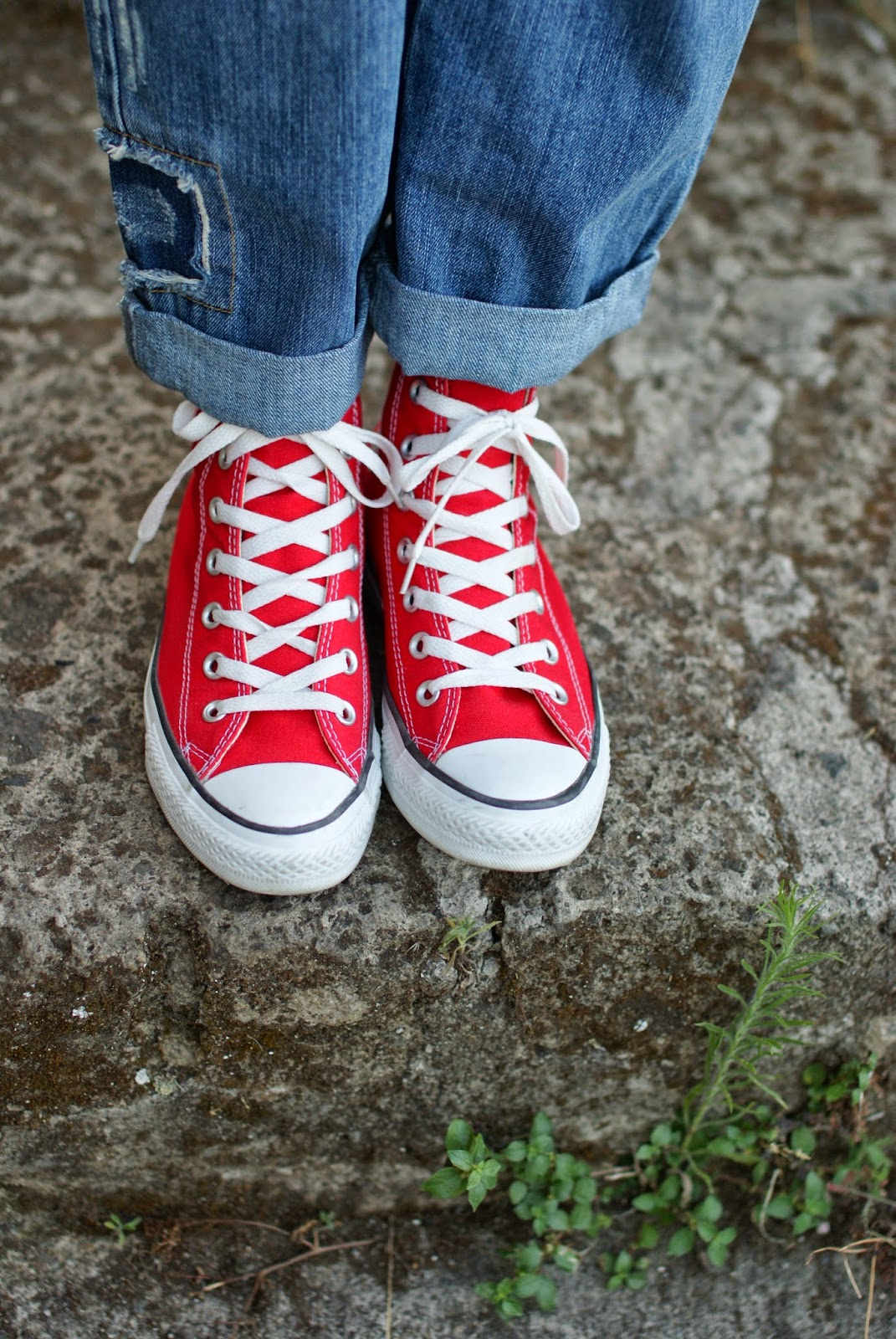 Red converse sneakers, fashion blogger, Fashion and Cookies