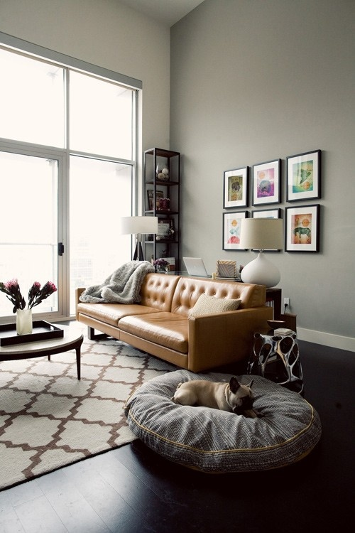 Grey Leather Sofa Tan Walls (8 Image)