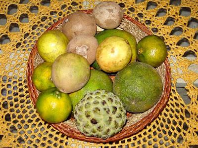 Restaurante Paraíso Tropical: Frutas do pomar