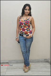 Madhavi Latha Picture Shoot Gallery in Jeans at Ela Cheppanu Movie Audio Launch  0033