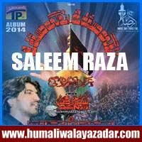 http://ishqehaider.blogspot.com/2013/11/saleem-raza-nohay-2014.html