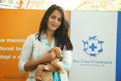 Anushka with Puppy at Blue Cross Pet Carnival Press meet-thumbnail-11