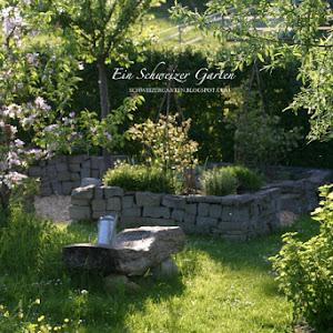 butterblumenwiese - Offener Vorgarten