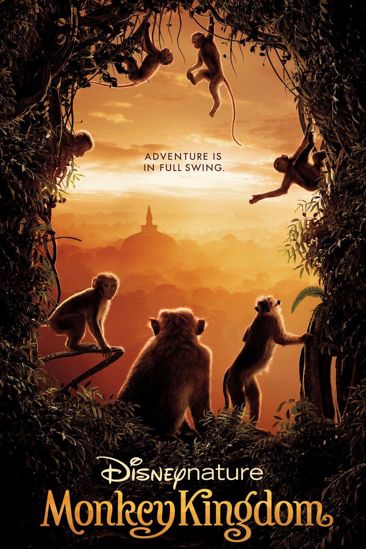O Reino dos Primatas – Dublado (2015)