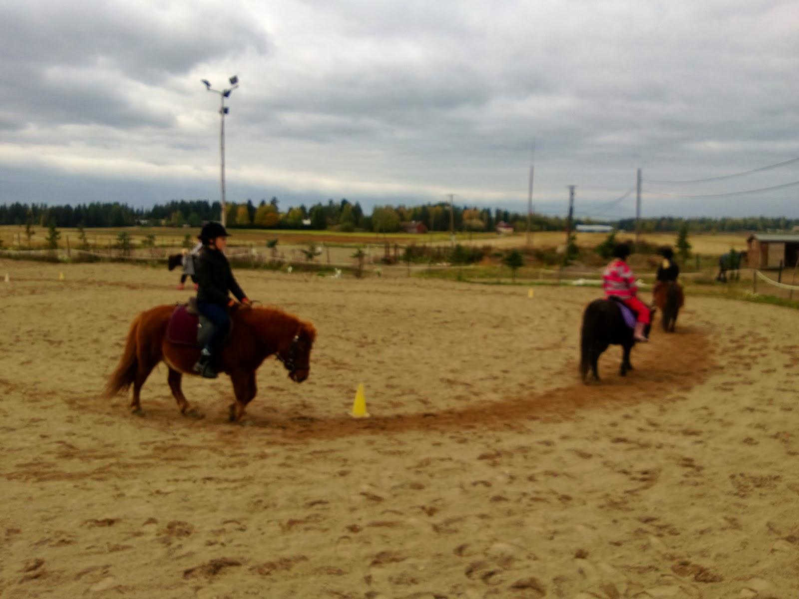 nainen ja hevonen tuusula