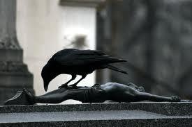 Significado de los sueños con cuervos