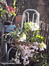 Jardim da artista
