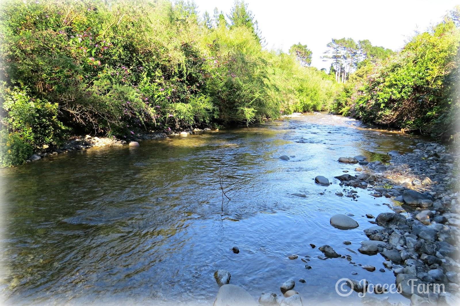 The River - joceesfarm.blogspot.com