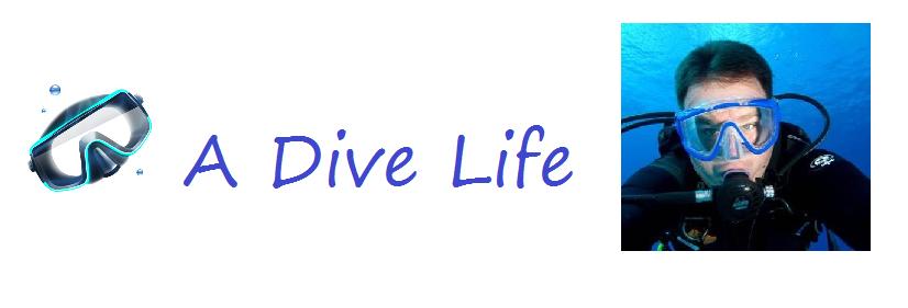 A Dive Life