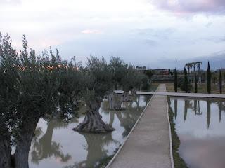 Parque del Agua (Luis Buñuel) olivos Crecida del río Ebro 22/01/2013 Zaragoza