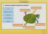 http://www.e-vocacion.es/files/html/143175/recursos/la/U02/pages/recursos/143175_P23/es_carcasa.html