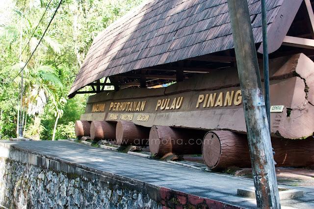 taman rimba teluk bahang, muzium perhutanan pulau pinang, tempat menarik berkelah, tempat menarik di penang,