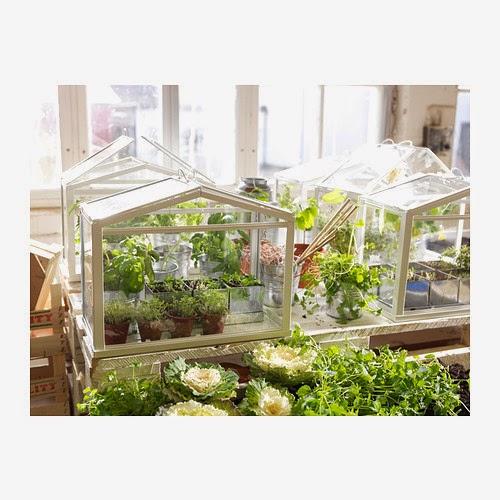 Invernadero de Ikea para decorar con vegetación