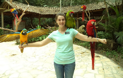 Bird Park - Guacamayas and Loros! (macaws and parrots)