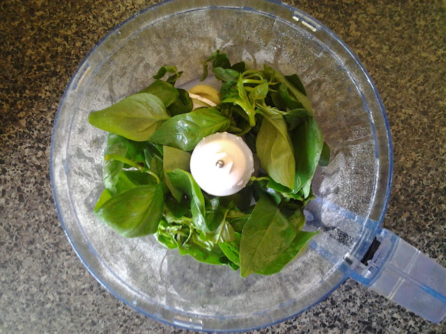 basil food processor