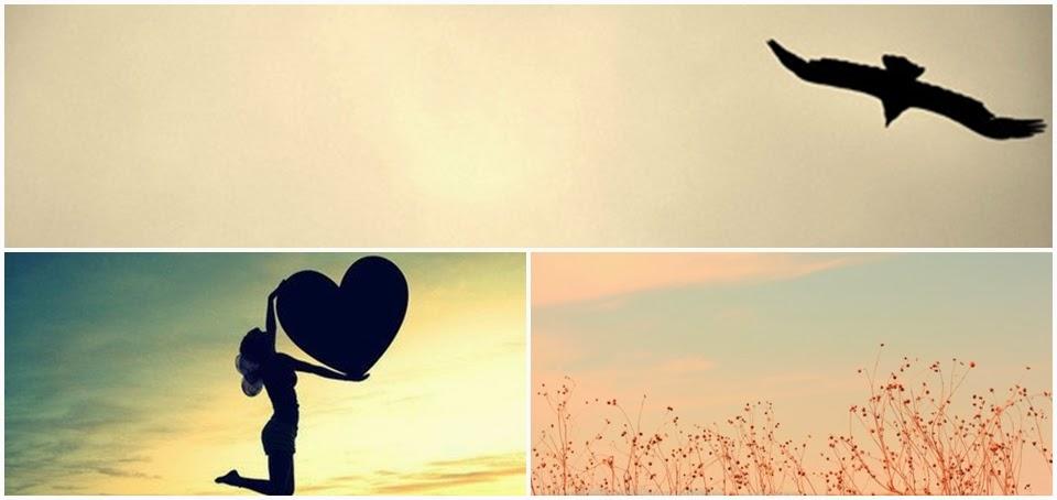 vai aonde te leva o coração