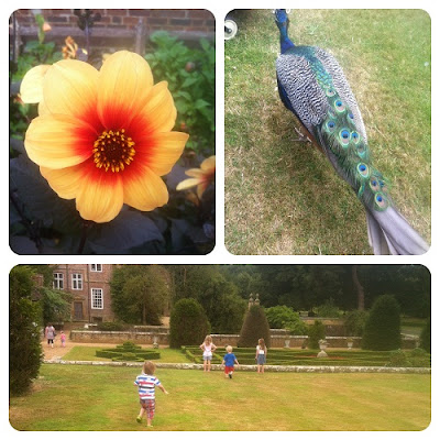 Groombridge Place, Family Day Out Kent, Kent Gardens, Day out with Kids, Summer Holidays