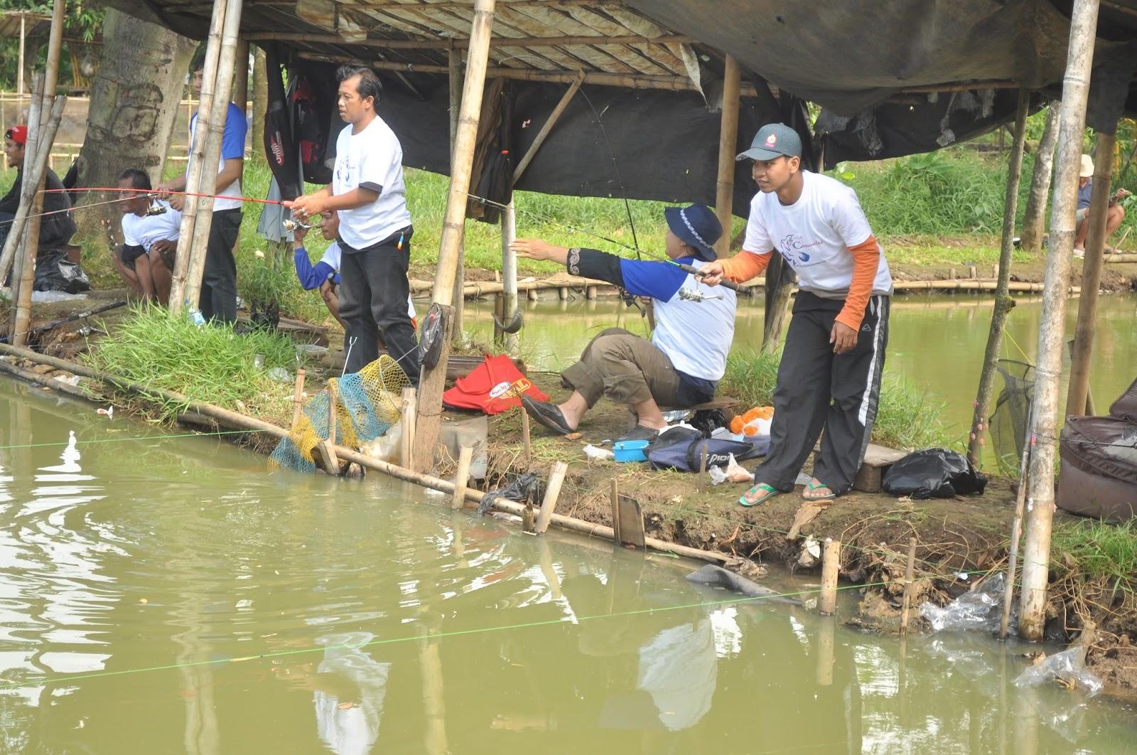 Bahan Dan Cara Membuat Umpan Mancing Ikan Mas Di Air Keruh