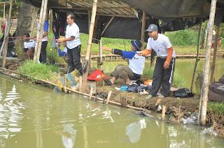 umpan mancing ikan mas di air keruh