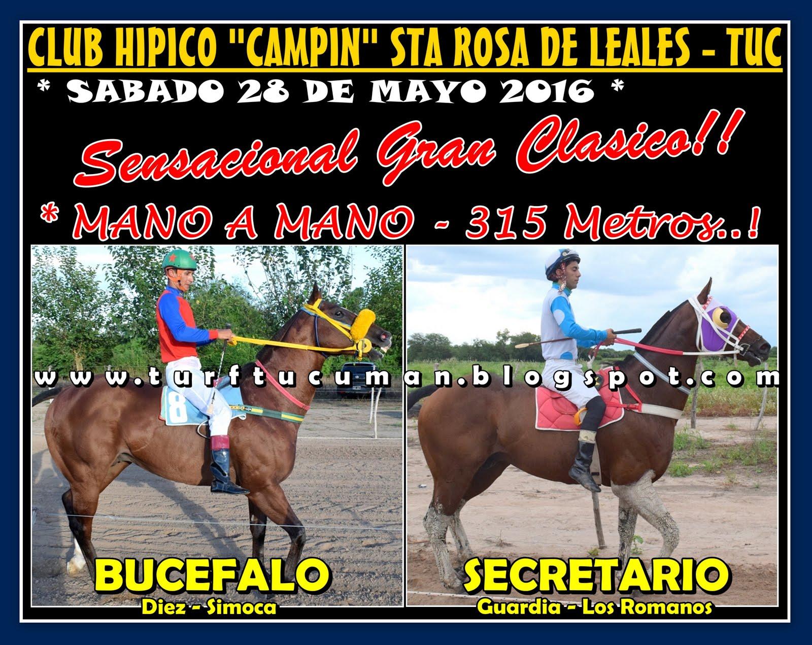 BUCEFALO VS SECRETARIO