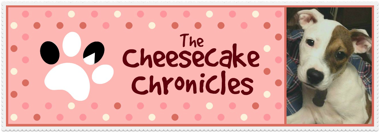 The Cheesecake Chronicles