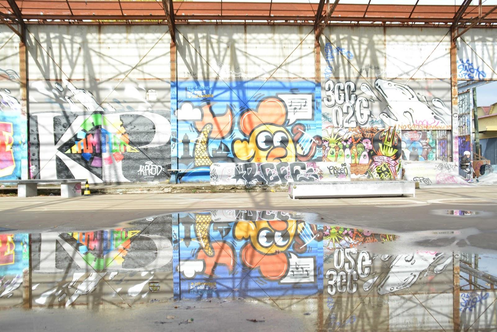bordeaux street art darwin et les vivres de l 39 art autour de cia. Black Bedroom Furniture Sets. Home Design Ideas