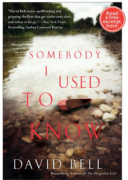 ONE TO WATCH: THE NEXT 'THE GIRL ON THE TRAIN' ? - SOMEBODY I USED TO KNOW by DAVID BELL