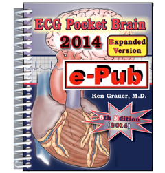 ECG Pocket Brain 2014