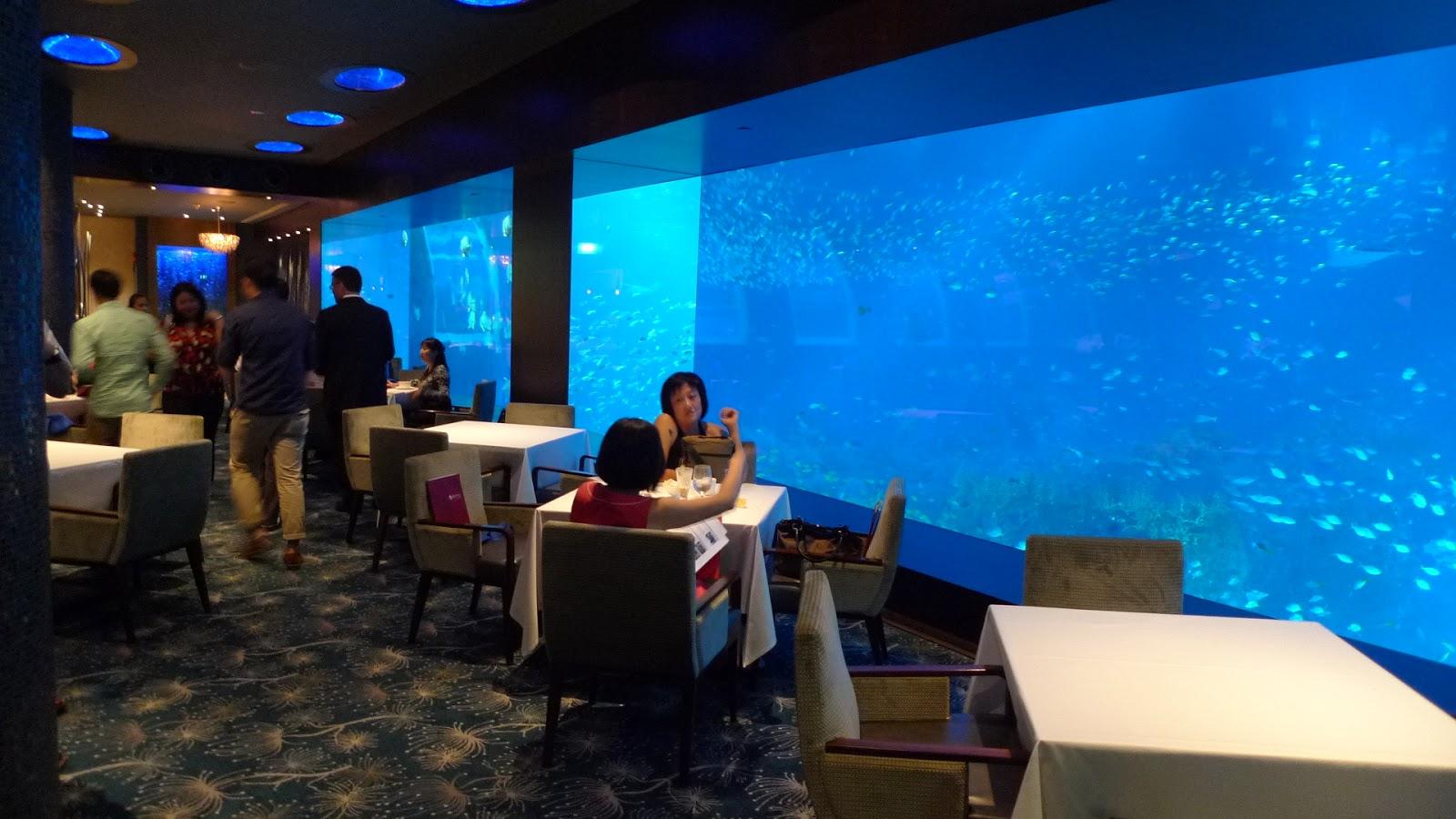 how to go ocean restaurant by cat cora
