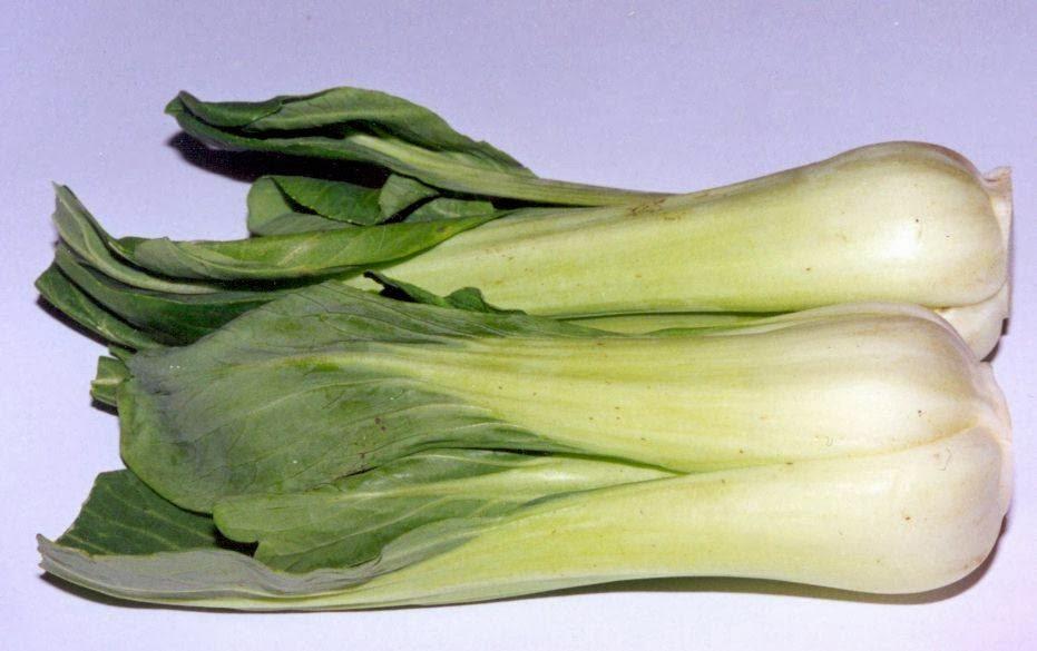 Begini Cara Mengolah Sayuran Agar Manfaatnya Tidak Hilang !