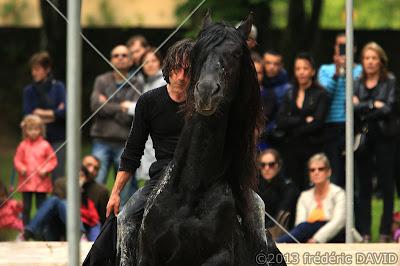 spectacle danse contemporaine cheval Thomas Chaussebourg Ma Mête Noire Chamarande Essonne