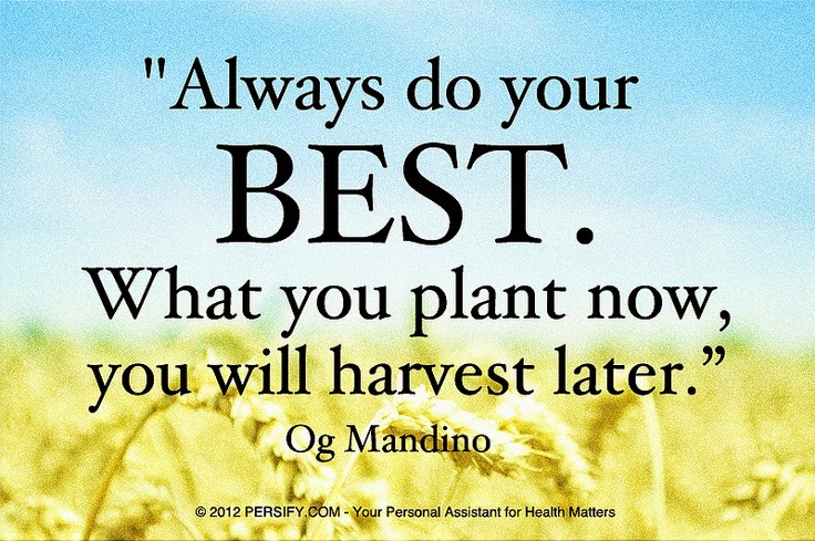 """Always do your best. What you plant now, you will harvest later."" ~ Og Mandino Picture of a wheat field. persify.com"