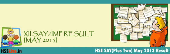 Plus Two SAY IMP Result 2013