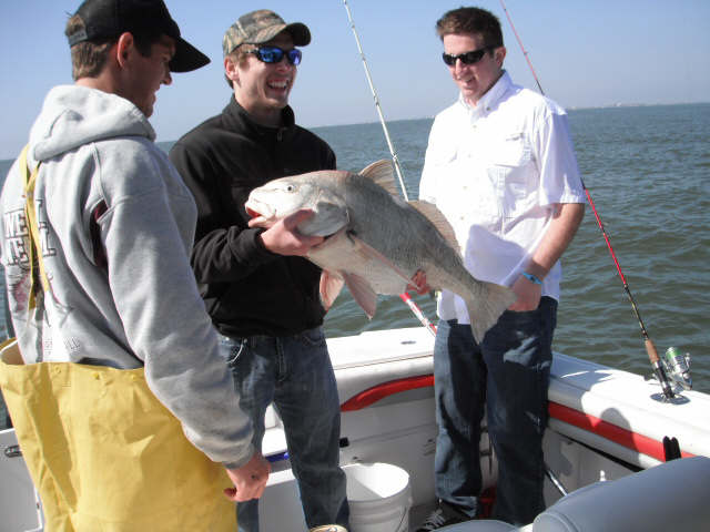 Galveston texas fishing reports galveston fishing report for Galveston fishing reports