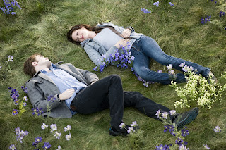Love Couple Lying On Grass HD Wallpaper