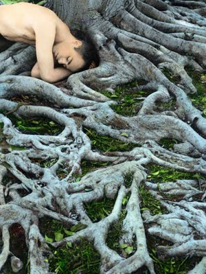 Youssef Nabil Self portrait with roots, Los Angeles 2008.