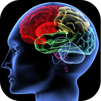 Oscar EducationCognitive Psychology