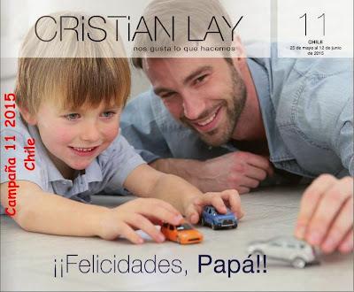Cristian Lay Campaña 11 2015 Chile