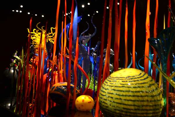 Chihuly Garden and Glass Seattle Fun Fact 10 Ride The Ducks