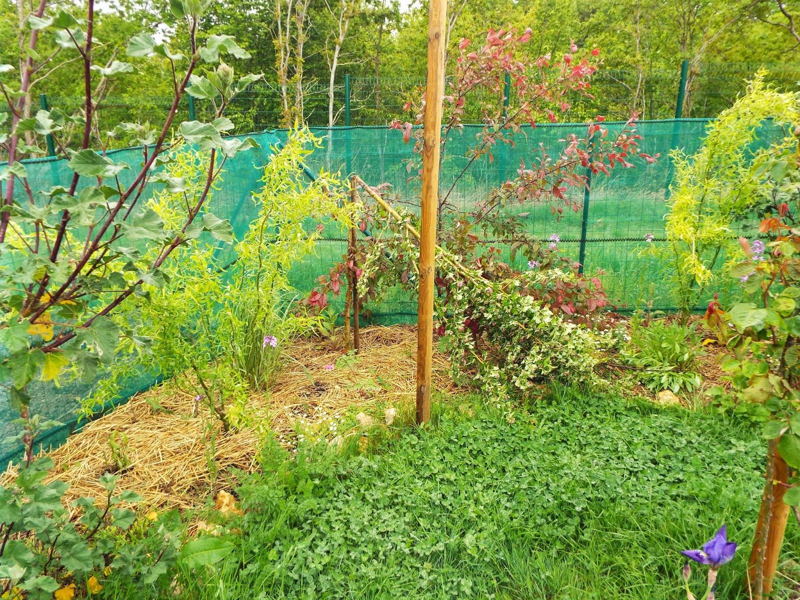 Jardin aux quatre saisons tristesse au jardin for Jardin 4 saisons