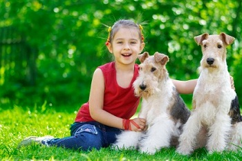 good dog breeds for children winning on a dog spell having children ...