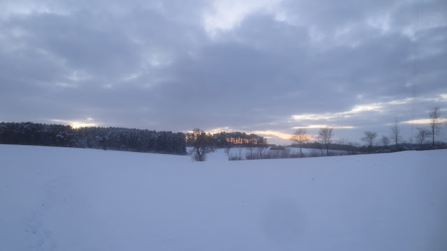 Winterspaziergang im Frankenwald