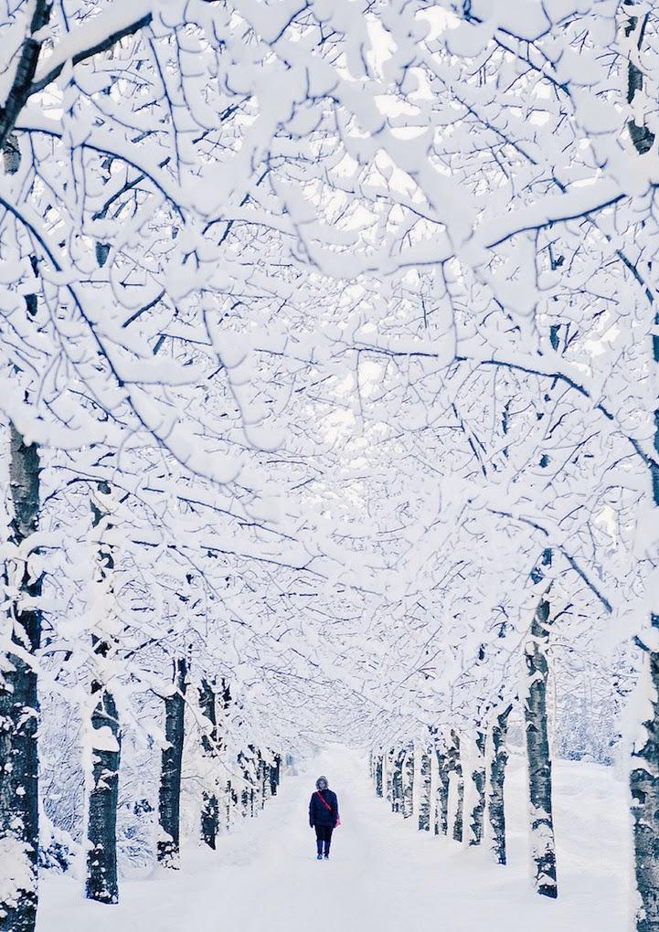 breathtaking winter photos-2