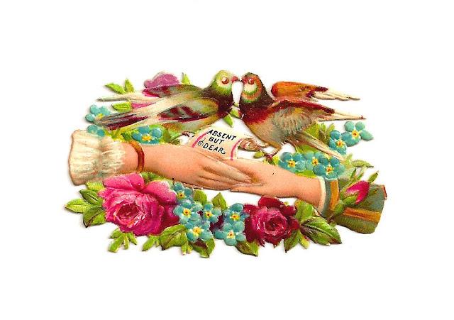 http://4.bp.blogspot.com/-qy7uBlUU7Xw/UfwV0K_WgaI/AAAAAAAAP8s/KsOFTW_JlY4/s1600/birdwhimsykissing.jpg