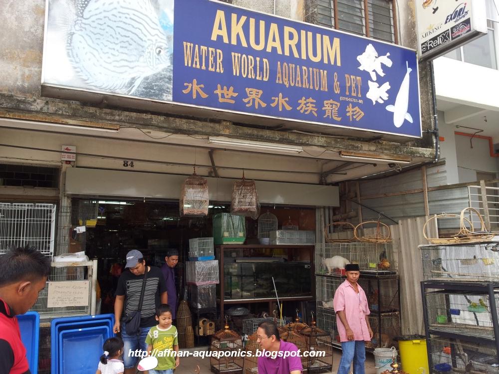 Aquaponics stores aquaponics at home for Aquarium shop