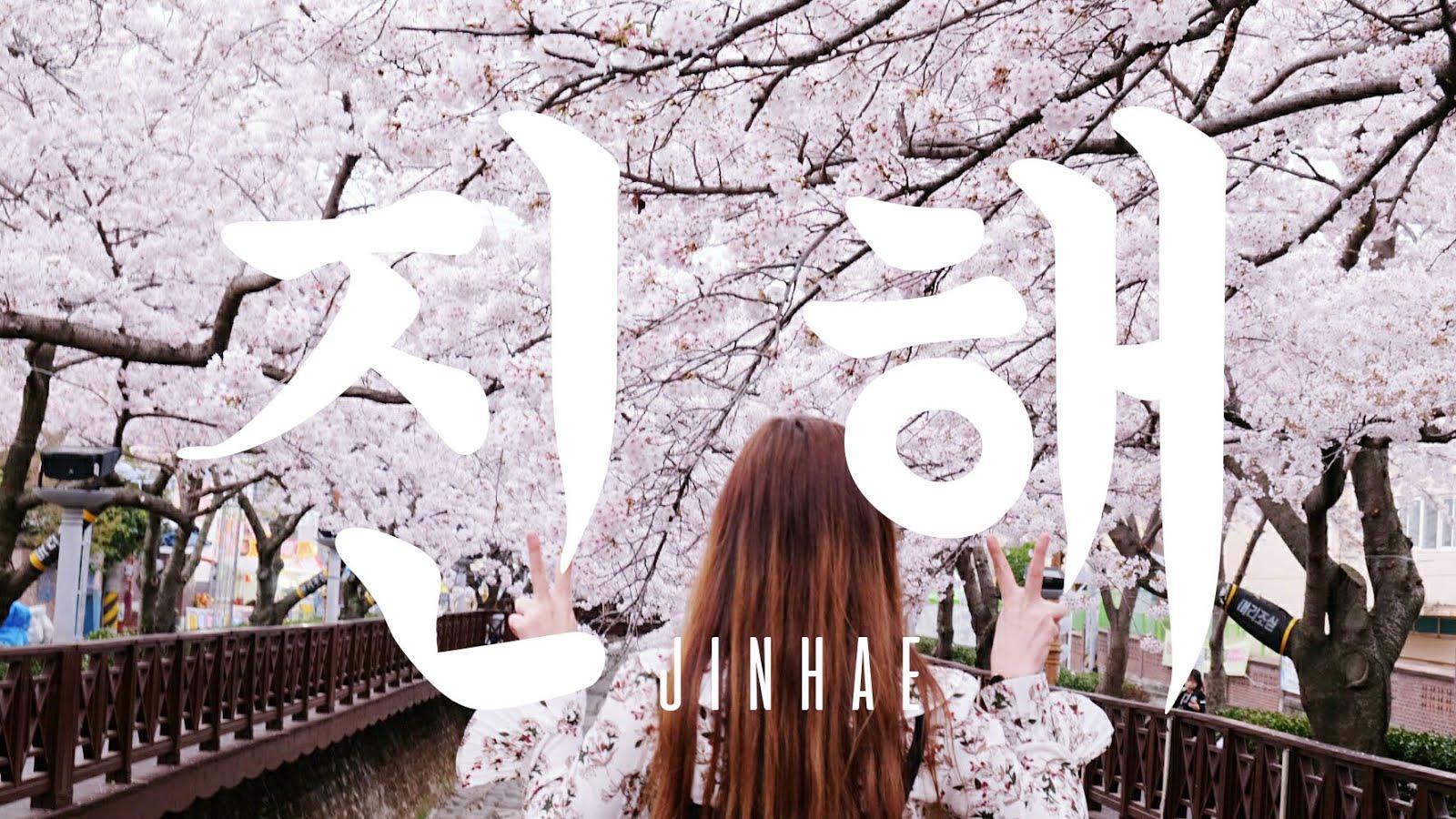 jinhae itinerary