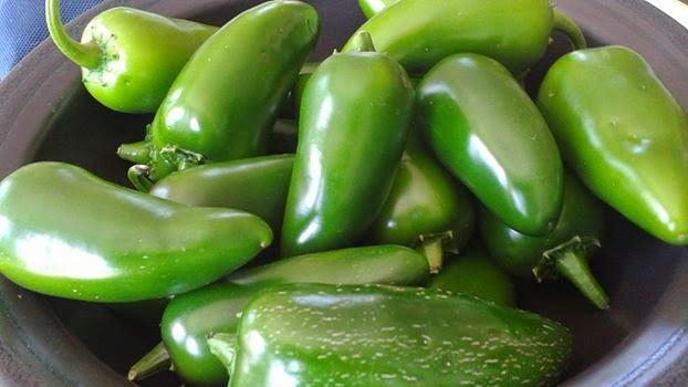 Goliath Jalapeno Peppers