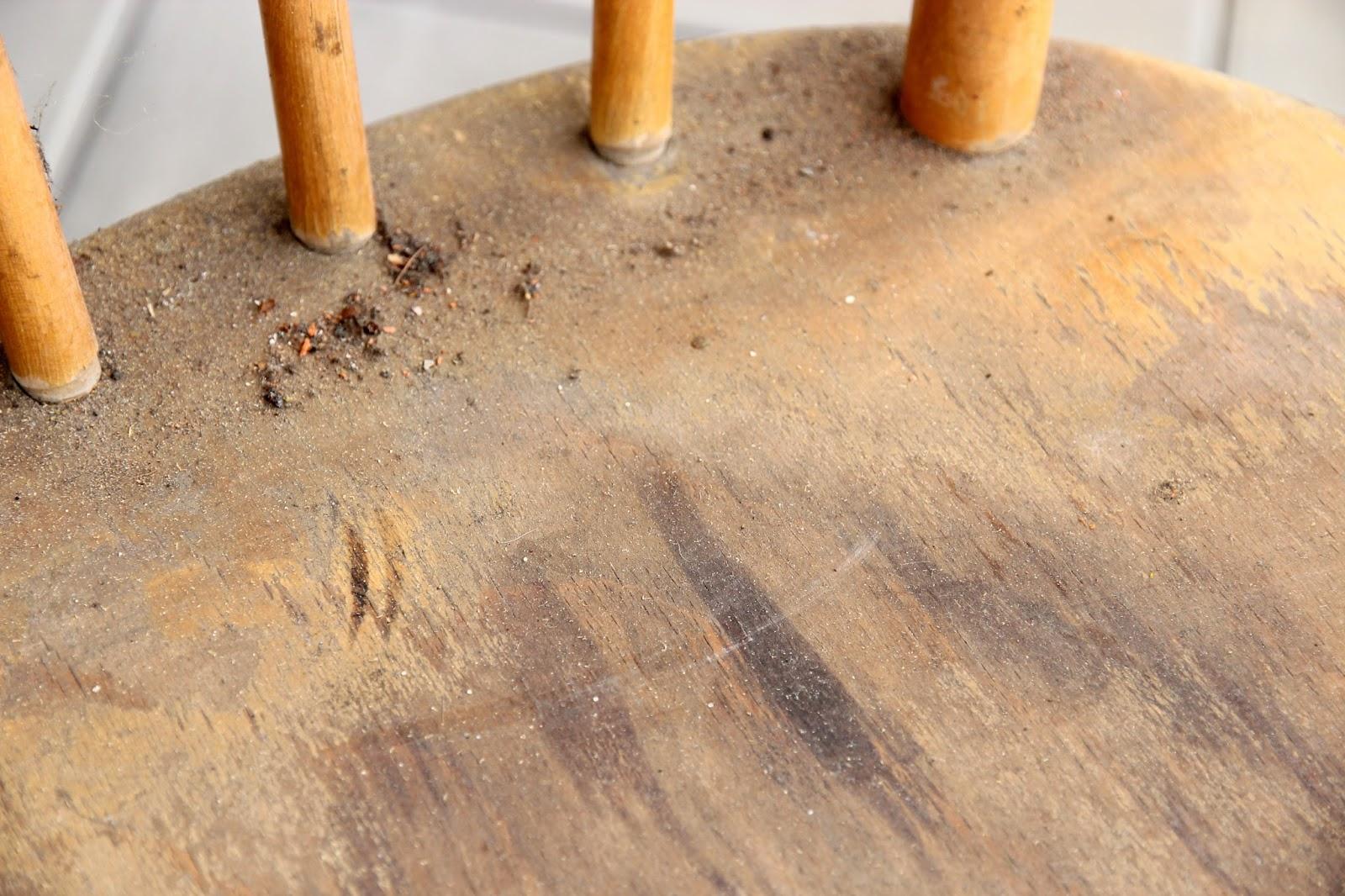 how to clean bird poop of terracotta