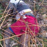 Conflik West Papua